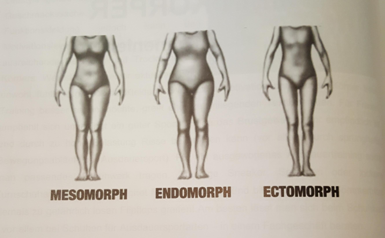 Frau anatomie körper Anatomie der